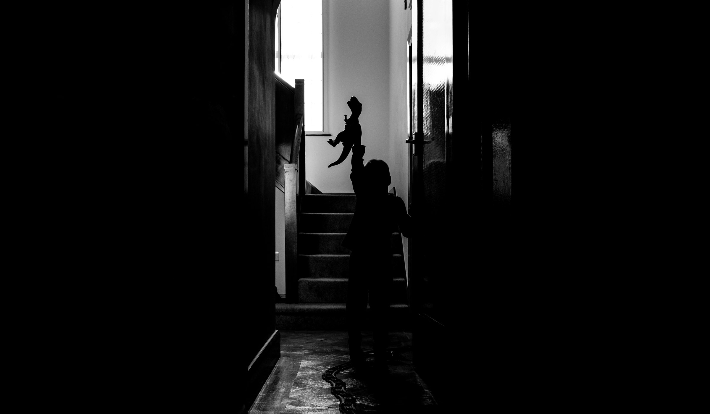 the silhouette of a boy playing with a dinosaur