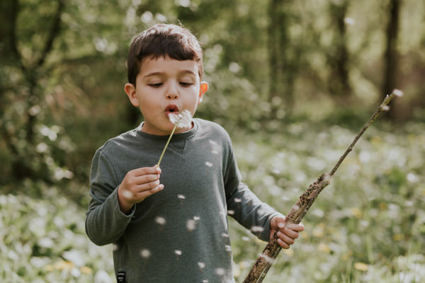 little boy blowing a blowball dandelion.